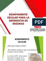 14.04 ROMPIMIENTO CELULAR PARA LA OBTENCIÓN DE ENZIMAS.pdf