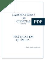 1093136_PRTICAS_DE_QUMICA.pdf