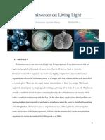 Bio Luminescence Living Light Paper