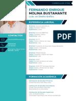 HOJA DE VIDA FERNANDO MOLINA