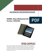 iPad Report 2010