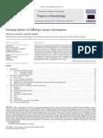 Emerging-themes-in-GABAergic-synapse-developmen_2011_Progress-in-Neurobiolog (2)