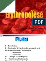 erythropoïèse