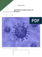 Un fármaco antiparasitario logra matar al coronavirus en 48 horas (1)