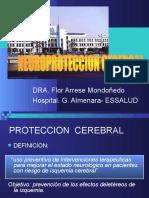 Neuroproteccion Cerebral