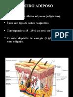 aula 7 tecido adiposo e cartilaginoso 2019