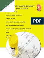 ESTUDIS DE LABORATORIO Y GABINETE EN PTE NEFROPATA.docx