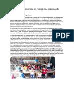 ANALISIS DE LA HISTORIA DEL PRONOEI Y SU ORGANIZACIÓN.docx