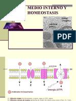 1- Medio Interno y Homeostasis