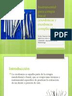 Histología-Frida