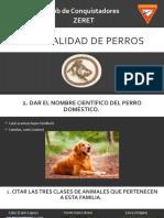 Especialidad de PERROS.pptx