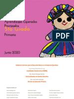 APRENDIZAJES ESPERADOS PRIORIZADOS- 5to Grado