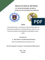 Tesis modelo.pdf