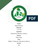 Producion y Mercadeo de software