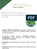 Aula 2 Pastos 2014.pptx
