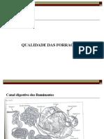 Qualidade das Forragens 1.ppt
