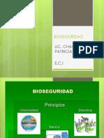 Bioseguridad hospital.pdf