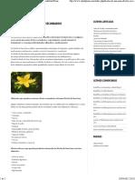 Hierba de San Juan efectos secundarios _ Salud PlenaSalud Plena
