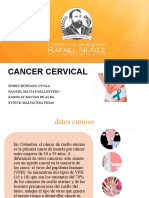 Cancer Cervical Grupo 3