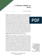 Calavia Saez. Autobiografia e Liderança Indígena No Brasil