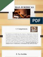 FIGURAS JURIDICAS
