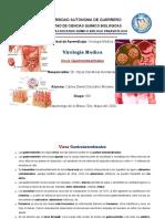 Virus Gastrointestinales Virologia