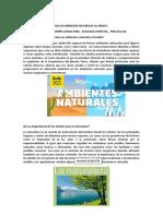INFLUENCIA DE LOS ARBOLES EN AMBIENTE NATURALES AL MEDIO