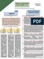 MAPA CONCEPTUAL - VISITAS Y EXCURSIONES.pdf