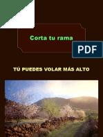 Corta_tu_rama OK (2)