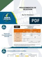 0. Presentación PPT - Procedimiento de Selección.pdf