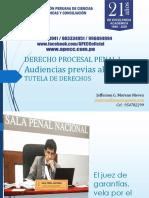Tema 8 - Audiencias previas al juzgamiento - Tutela de derechos