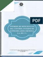 INFORME DE DEFICIENCIAS 2019
