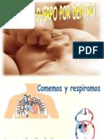 nuestrocuerpopordentroud-1-120310065210-phpapp01 (1).pptx