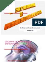 Anestesia Sind. Hipert. a 2010