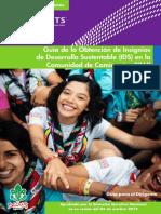 Guía de la Obtención de Insignias de Desarrollo Sustentable (IDS) en la Comunidad de Caminantes 2019.pdf