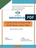 Yabo Janserbe Claver Rapport Stage Pre-emploi Onape