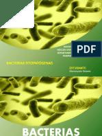 Bacterias Marianyela Solarte.pdf