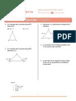 04 - Triângulos (Vestibular) - Exercicios