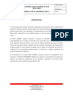 Plan Saneamiento Maxi Carnes.doc