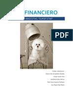 PLAN FINANCIERO PELUQUERIA DE MASCOTAS