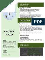 CV 2020 RAZO