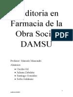 Informe DAMSU (1)