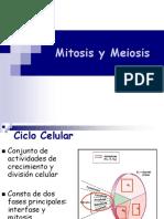 w5 Mitosis_y_meiosis