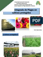 CULTIVOS_PROTEGIDOS_1.pdf