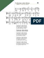 0702.111.t.adoriam.ostia.divina.pdf