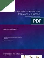 Anatoma quirurgica de estomago y  duodeno Ppt