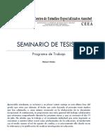 Programa de Trabajo SEMINARIO DE TESIS 3-1