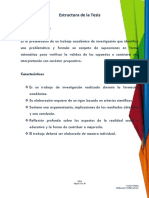 Programa de Trabajo SEMINARIO DE TESIS 3-4