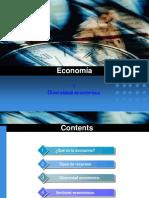 4.1 Economía y diversidad económica