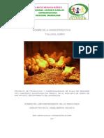 Proyecto pollos de engorde El Cerro.docx